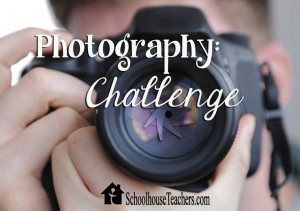 Photography Challenge on Schoolhouse Teachers