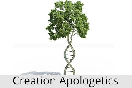 creationapologetics