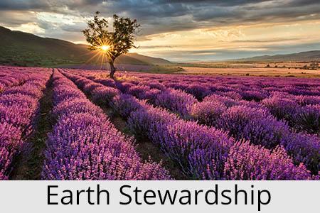 stewardshipofgodsearth