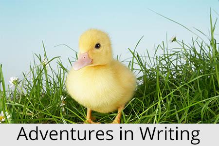 adventuresinwriting