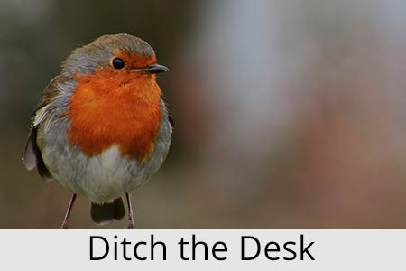 ditchthedesk