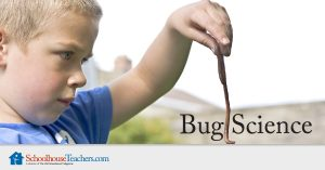 bugscience_Facebook_1200x628