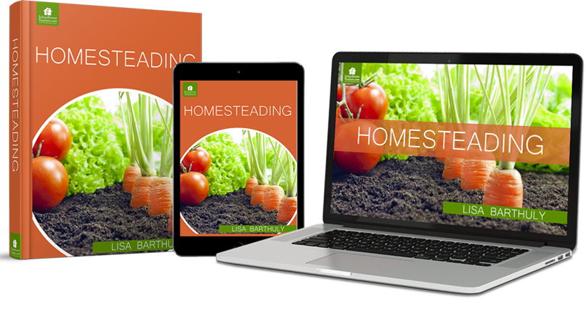 homesteading course