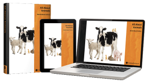 All About Animals Homeschool Science