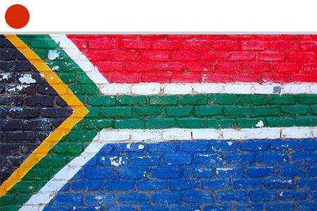 Homeschool Art Curriculum - South African Art Appreciation
