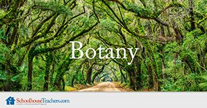 Botany Homeschool Science Course