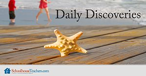 Daily Discoveries Homeschool Science