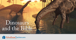 Dinosaurs and the Bible affiliate banner