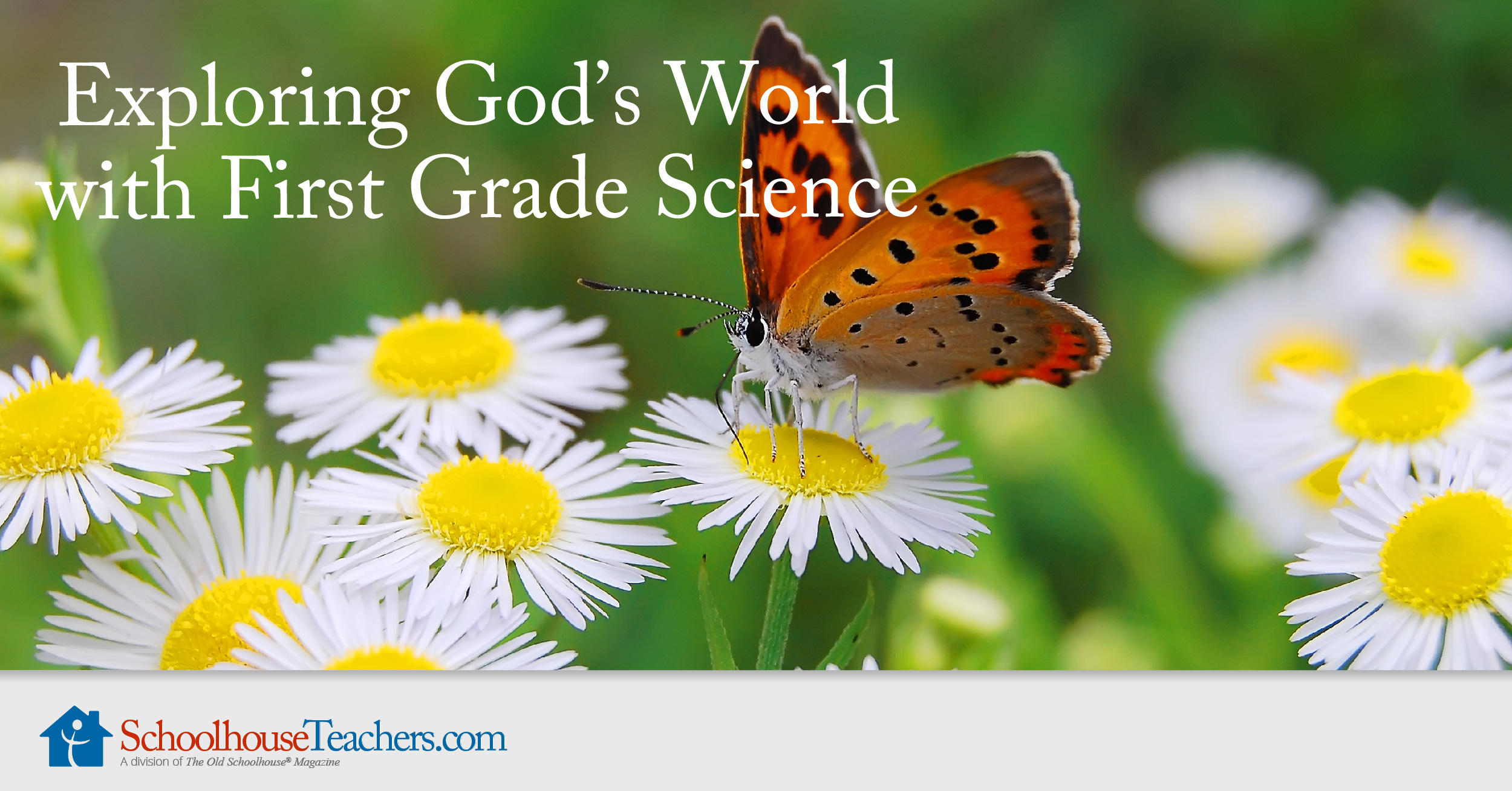 Exploring Gods World With First Grade Science Schoolhouseteacherscom