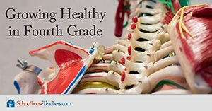 Growing Healthy in Fourth Grade Homeschool Health and Fitness
