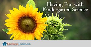Having fun with Kindergarten Science Homeschool Course