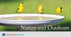 Nature and Outdoors Homeschool Science