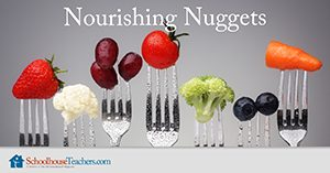 Nourishing Nuggets Homeschool Health and Fitness