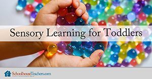 Homeschool Language Arts Sensory Learning for Toddlers