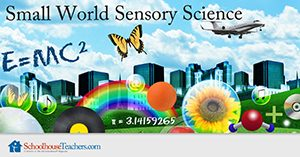 Small World Sensory Science Homeschool Course